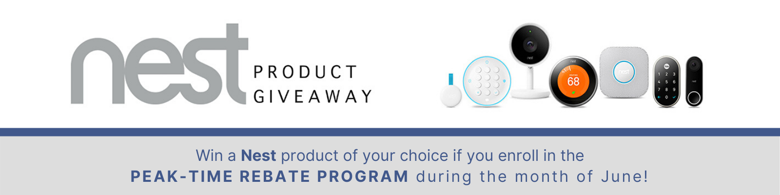 June Giveaway for Nest Product
